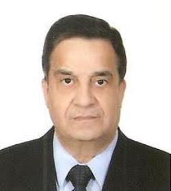 محمود الزواوي