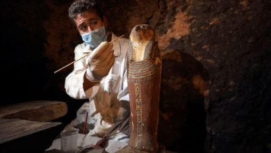 صورة الكشف عن 7 مقابر أثرية فرعونية في مصر بالقرب من الأهرامات