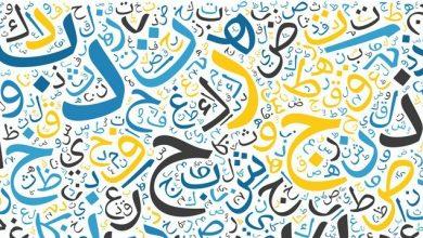 صورة العربية تستغيث.. إلى متى تستمر أزمة اللاإنتماء والهروب نحو الآخر؟