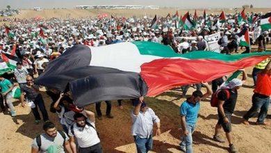 صورة استطلاع: نصف الأمريكيين يؤيدون إنشاء دولة فلسطينية مستقلة