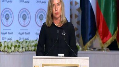 صورة موجيريني تؤكد ضرورة التعاون بين الدول العربية والأوروبية لمواجهة التحديات