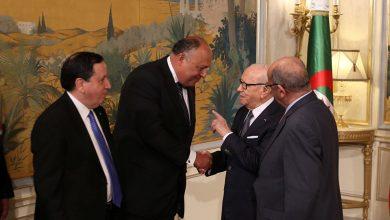 تونس تنفي وجود خلافات مع مصر والجزائر حول الملف الليبي