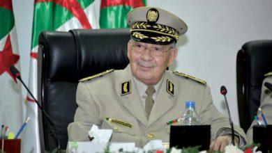 رئيس الأركان الجزائري: ليس لنا طموح سياسي ونسعى لخدمة البلاد