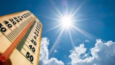 صورة ألمانيا تسجل رقمًا قياسيًا لدرجة الحرارة في نهاية يونيو