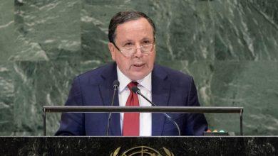 صورة تونس: سنحرص على الدفاع عن القضايا العربية والإفريقية خلال عضويتنا بمجلس الأمن
