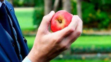 صورة علماء يعثرون على بكتيريا خطيرة داخل التفاح
