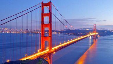 صورة إنشاء أكبر جسر في العالم لعبور الحيوانات البرية بكاليفورنيا