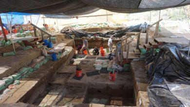 صورة اكتشاف آثار تظهر وجود بشر في الأمريكيتين قبل 16 ألف عام