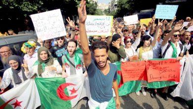 صورة السلطة الجزائرية تسعى لاستحقاق انتخابي دون ضجيج