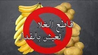 الشعب التونسي يطلق حملة مقاطعة لمواجهة غلاء الأسعار