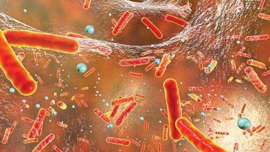 صورة هل اقتربنا من عصر فشل المضادات الحيوية؟