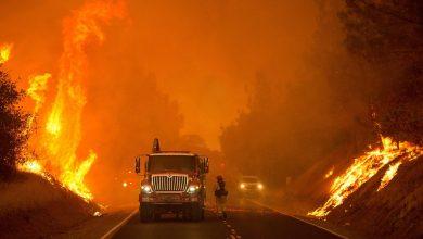 صورة حاكم كاليفورنيا يحمل شركات كبرى مسؤولية انقطاع الكهرباء بالولاية
