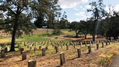 صورة عمدة مدينة يحفر 615 قبرًا لإجبار السكان على الالتزام بالعزل