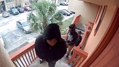 صورة بالفيديو: مفاجأة في انتظار 3 لصوص اقتحموا منزلًا في فلوريدا