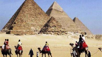 صورة في مقدمتها الأهرامات.. مصر تعيد فتح معظم المتاحف والمواقع الأثرية
