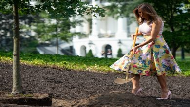 بعد تجديد حديقة الورود.. اتهام ميلانيا ترامب بتدمير تاريخ أمريكا