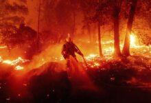 صورة مقتل 30 شخصًا وفقدان العشرات في حرائق غابات الساحل الغربي